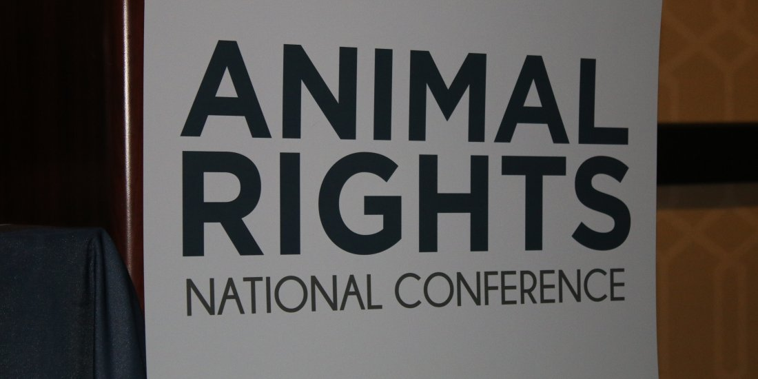 NGPF uitgenodigd bij Animals Rights National Conference in Los Angeles