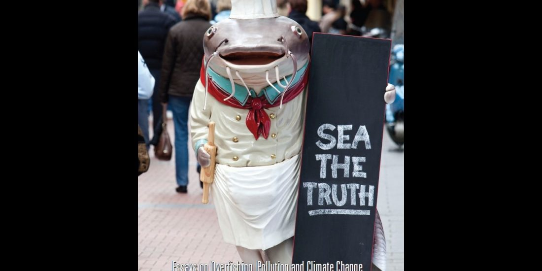 Boek: Sea the Truth